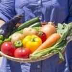 離乳食期の野菜選びの基準は?私がココノミの無農薬野菜を選ぶ理由